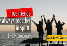 Photo of Friendship Quotes short