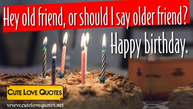 Photo of 95 Happy Birthday Quotes for a Friend On Success and Wishes